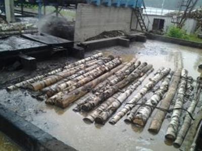 Проваривание березовых стволов в бассейне