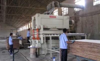 Процесс изготовления натурального многослойного шпона