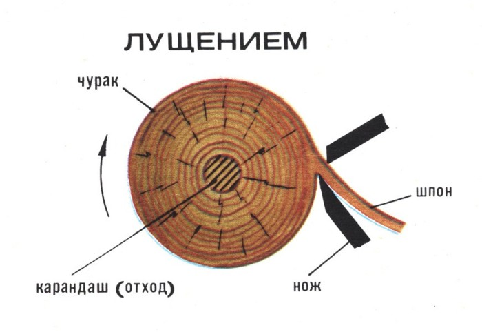 Лущение древесного шпона