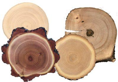 Сорт определяется по кондициям дерева